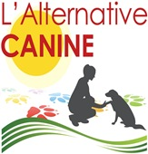 L'Alternative CANINE