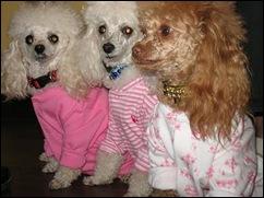 au dernier Pyjama Party...