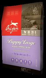 puppy_large1