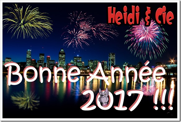 Bonne_Annee_2017