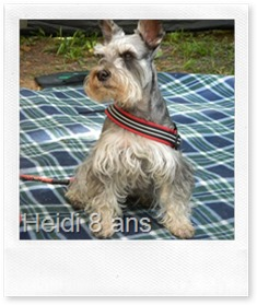 Heidi-8ans
