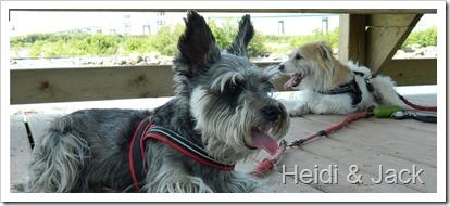 Heidi et Jack FB